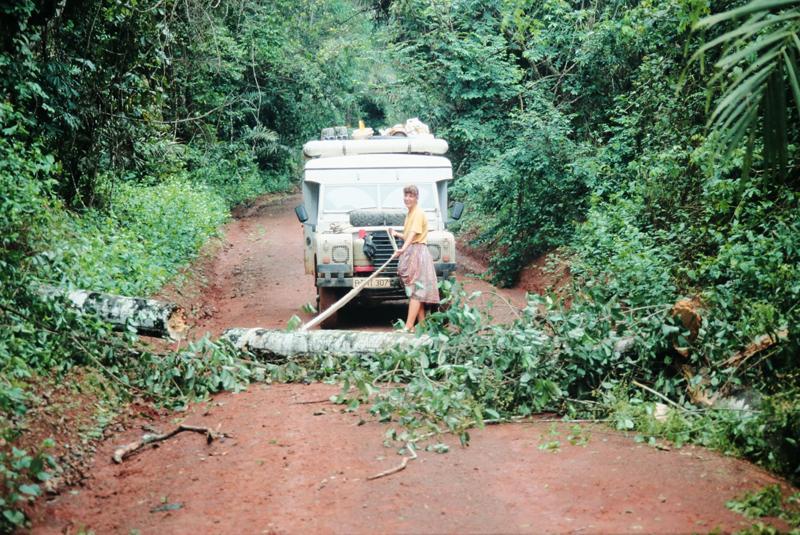 Strassenblockade durch einen Baumstumpf
