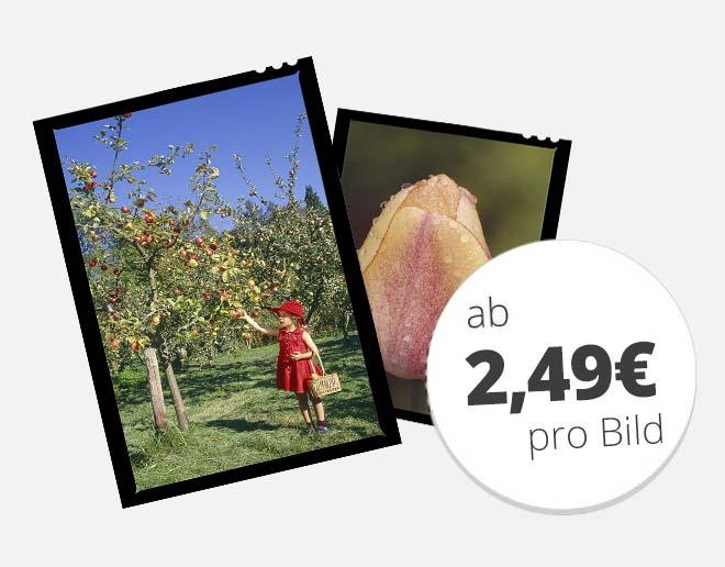 Großformate digitalisieren ab 2,49 € pro Bild